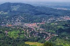 Лес Германия Schwarzwald черный Стоковая Фотография RF