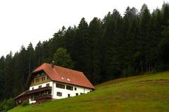 Лес Германия Schwarzwald черный Стоковая Фотография