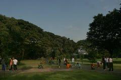 Лес города чистки Стоковые Изображения