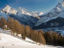 Лес горы и подъем лыжи стоковая фотография rf
