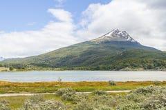 Лес горы снега и река Lapataia, нация Огненной Земли Стоковое фото RF