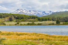 Лес горы снега и река Lapataia, нация Огненной Земли Стоковая Фотография