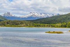 Лес горы снега и река Lapataia, нация Огненной Земли Стоковые Изображения RF