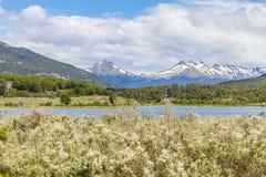 Лес горы снега и река Lapataia, нация Огненной Земли Стоковое Изображение RF