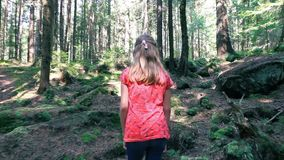 Лес девушки исследуя на солнечный день в секретное passway сток-видео