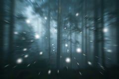Лес запачканный движением абстрактный с светляком стоковые изображения