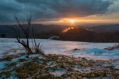 Лес захода солнца черный Стоковая Фотография