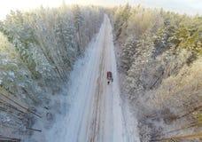 Лес зимы с взглядом птиц-глаза Стоковое Изображение RF