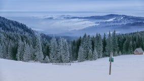 Лес зимы, Rusinowa Polana, высокое Tatras, Польша Стоковые Фотографии RF