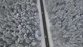 Лес и автомобили Snowy на дороге видеоматериал