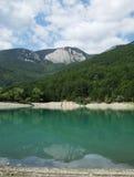 Лес и гора около озера стоковая фотография rf