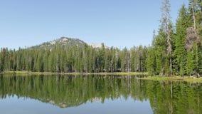 Лес и горный пик на национальном парке Lassen вулканическом акции видеоматериалы