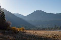 Лес и горы ландшафта стоковая фотография
