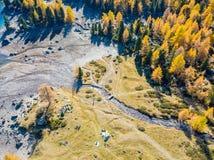 Лес и заболоченное место в золотом сезоне падения в Lagh da Val Виола стоковая фотография