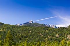 Лес и неровная горная цепь Стоковое Изображение