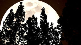 Лес и огромная луна Sepia видеоматериал