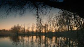 Лес и озеро вечера весны Стоковые Фотографии RF