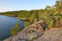 Лес и озеро на заходе солнца Аландские острова Природа Финляндии Стоковая Фотография