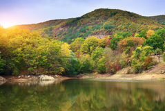 Лес и озеро осени Стоковые Изображения