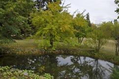 Лес и озеро с отражением в национальном монументе ландшафтной архитектуры паркуют музей Vrana в дворце бывшего времени королевско Стоковое Изображение RF