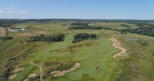 Лес и поле для гольфа сток-видео