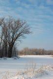 Лес и поле зимы покрытые снегом Стоковые Фотографии RF