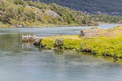 Лес и река Lapataia, национальный парк Огненной Земли Стоковое фото RF