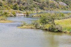 Лес и река Lapataia, национальный парк Огненной Земли Стоковая Фотография