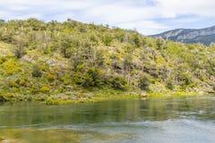Лес и река Lapataia, национальный парк Огненной Земли Стоковая Фотография RF
