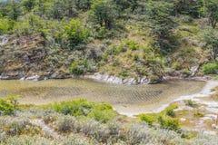Лес и река Lapataia, национальный парк Огненной Земли Стоковое Изображение