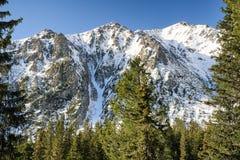 Лес и холм в высоком Tatras, Словакии Стоковое Изображение RF
