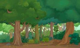 Лес иллюстрации Стоковая Фотография