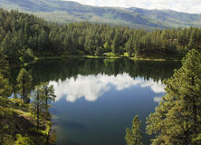 Лес Колорадо Сан-Хуана озера Shelona Стоковая Фотография RF