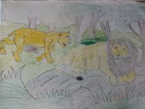 Лес льва стоковое фото