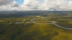 Лес мангровы в Азии Остров Филиппин Catanduanes акции видеоматериалы