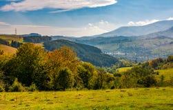 Лес на горном склоне в осенней сельской местности Стоковые Изображения RF