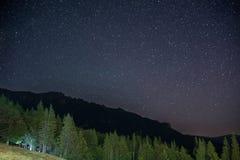 Лес на ноче, видимая галактика вечнозелёного растения елевый млечного пути, ясное небо, долгая выдержка Стоковая Фотография