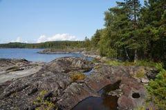 Лес на скалистом береге залива озера стоковое фото rf