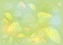 Лес нежной светлой иллюстрации графический выходит предпосылка вектора Стоковое Фото