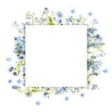 Лес незабудки голубой цветет - предпосылка природы квадратная Стоковая Фотография RF