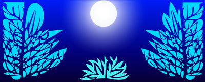 Лес ночи в лунном свете Стоковая Фотография RF
