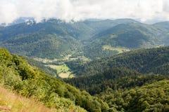 Лес около d'Alsace баллона Стоковое фото RF