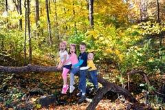 Лес осени в Теннесси Стоковые Фотографии RF