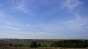 Лес осени на предпосылке голубого неба с небольшими облаками цирруса Промежуток времени Зеленая граница сосен на желтом цвете видеоматериал