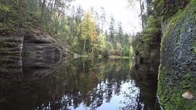 Лес осени отраженный в воде зеркала сток-видео