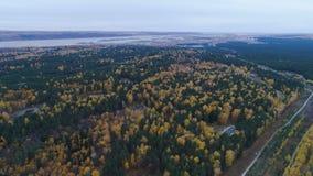 Лес осени панорамы смешанный с дорогой против озера и неба акции видеоматериалы