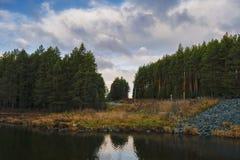 Лес осени с проселочной дорогой на заходе солнца Красочный ландшафт с деревьями, сельская дорога, солнце в падении стоковая фотография rf