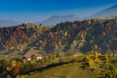 Лес осени холмов Стоковые Изображения RF