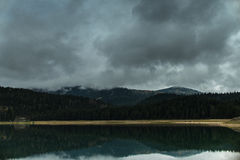 Лес отразил в воде черного озера Стоковое Изображение