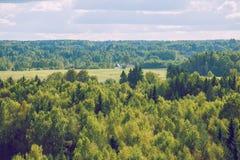 Лес от неба в Латвии, Ligatne Стоковое Изображение